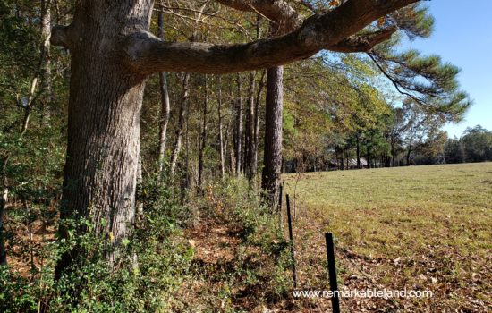 SOLD: Perfect Homesite! 🤯 2.37-Acres for Your New House