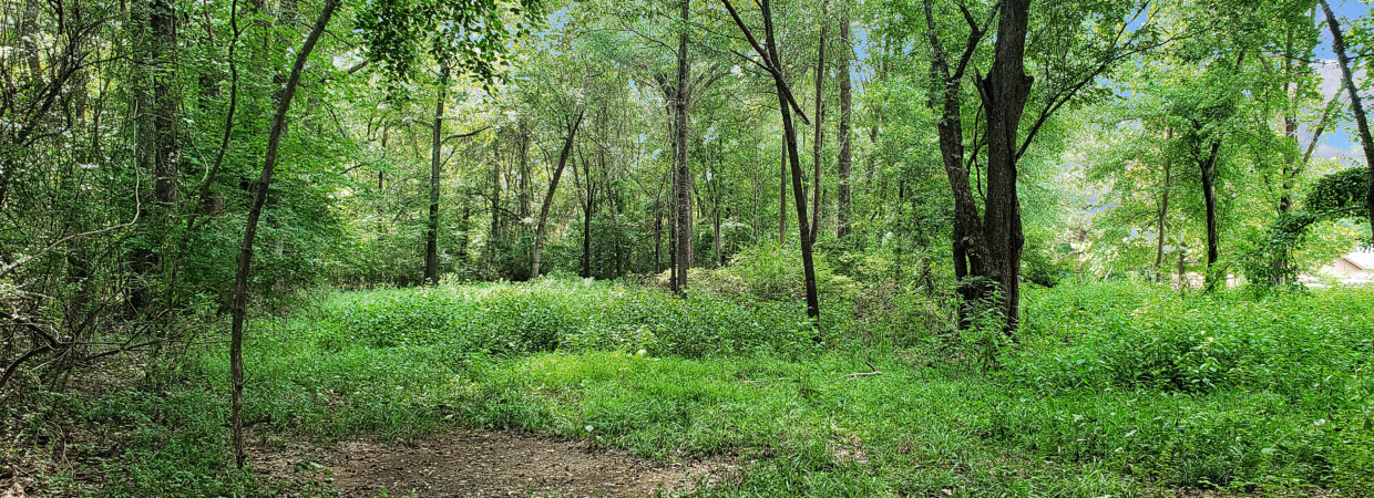 Land for Sale in Marshall, Texas